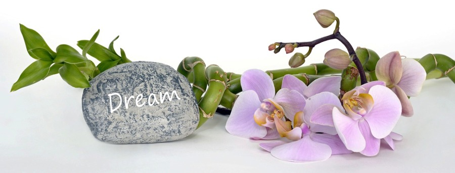 orchid-2115261_1280