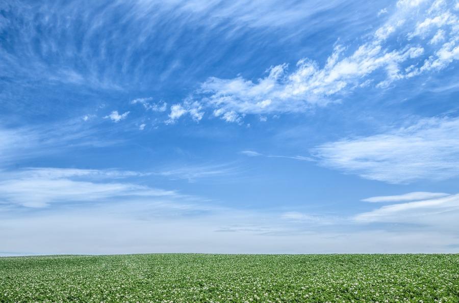 blue-sky-1348634_1280.jpg